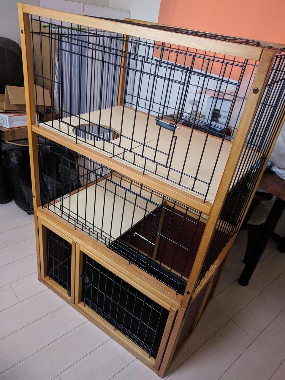 柴犬と保護猫とその仲間たち0610-03